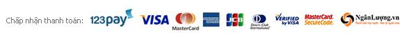 chap nhan thanh toan visacard mastercard